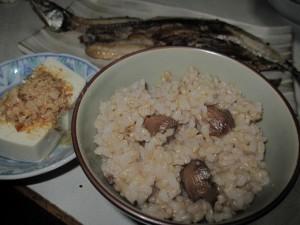 donguri-rice